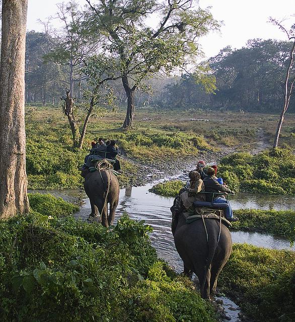 Explore Gujarat Wildlife Sanctuary