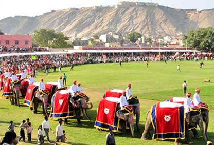 elephant-festival-jaipur1