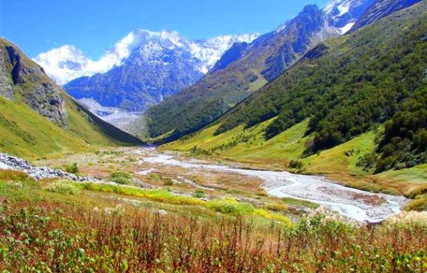Valley of Flowers1 - Uttarakhand